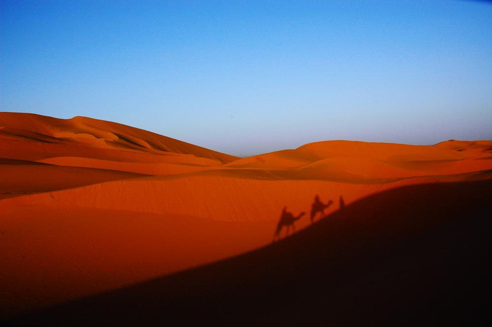 Dune e deserto del Marocco